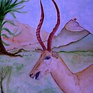 """""""Antelope"""" by Anne Gitto"""