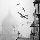 seagulls on eastbourne pier in the mist by Heather Buckley
