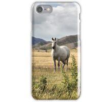 Mackenzie Country III iPhone Case/Skin