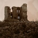 Scarborough Castle by darling-x
