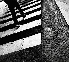 ZEBRA   crossing by Frank Waechter