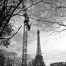 Eiffel crane by Dominique Meynier