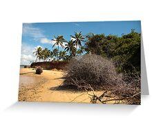 Lagoon Beach Greeting Card