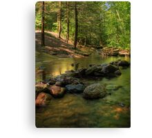 Looking Up Stream Canvas Print