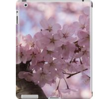 Silver Bark and Pink Blossoms iPad Case/Skin