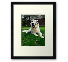 Digger Chillin Framed Print