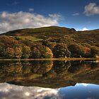 Autumnal Reflections - Tecwyn Isaf, North Wales by Emma Wright