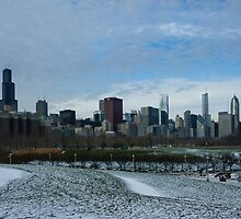 Wintry Windy City Skyline - Chicago, Illinois, USA by Georgia Mizuleva