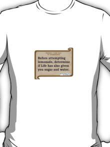 1st pragmatic law T-Shirt