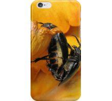 Prionus Laticollis Mating iPhone Case/Skin