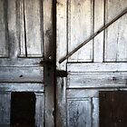 Old doors by alexa20