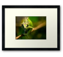 You callin' me bog-eyed? Framed Print