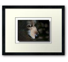 Lens test , specially for Canon users ! Framed Print