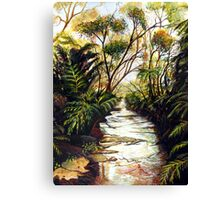 Katoomba Creek, Blue Mountains Australia Canvas Print