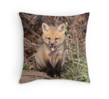 All In Good Taste Throw Pillow