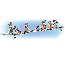 Drawing Day: Birdies Photographic Print