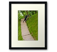 OnePhotoPerDay Series: 154 by L. Framed Print