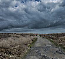 Looks like rain. by Brendan Buckley