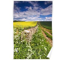 Yellow Blue And Green  Poster
