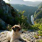 Sićevo Gorge by Aleksandra Misic