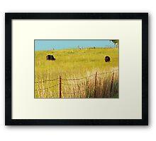 Knee Deep in Grass Framed Print