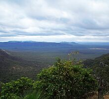 Horseshoe Lookout Blackdown Tableland by Noel Elliot