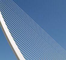 Bridge by douwe