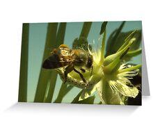 270 Bumble Bee Greeting Card
