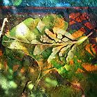 Gingko broken leaf collage by Heidi Rand