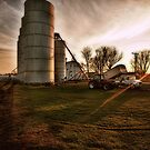 Harvest Sunset by Steve Baird