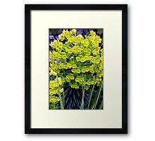 A Genetic Explosion Framed Print