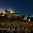 Night Harvest by Studio601