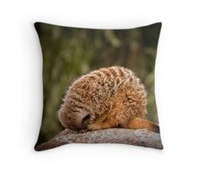 'I'm an echidna' Throw Pillow