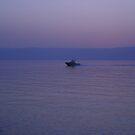 Purple sea by sky   princess