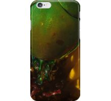 272 Green Shield Stink Bug iPhone Case/Skin