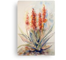 Winter Prelude (Watercolours from Africa 2010 calender) Canvas Print