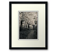 A Lane From A Different Time Since Passed Framed Print