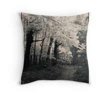 A Lane From A Different Time Since Passed Throw Pillow