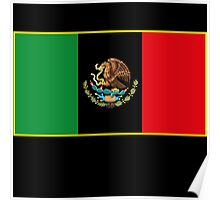 Afro Mexican Flag Poster