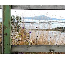 Nordic daydreaming Photographic Print