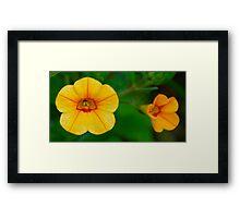 Little Orange, Little Yellow Framed Print