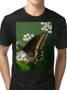 Eastern Black Swallowtail Butterfly Tri-blend T-Shirt