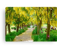 Follow the Yellow Floral Road... Canvas Print