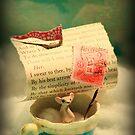 The Little Dreamer by Aimee Stewart