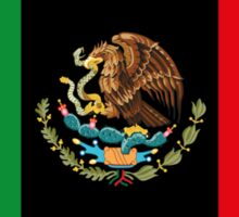 Afro Mexican Flag Sticker