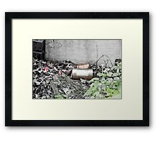 Rust and Flowers Framed Print
