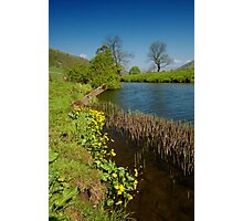 Scene on the River Wharfe II Photographic Print
