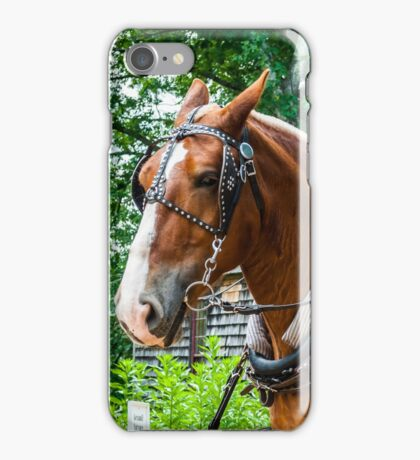 Belgian Draft Horses iPhone Case/Skin