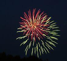 Fireworks newyears 2007 by Dgls57