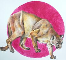 Cougar by michellaneous